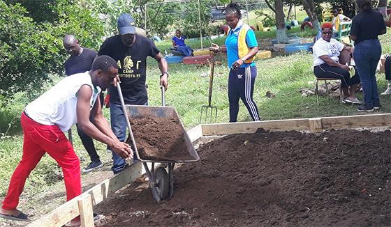 update-2-4-20-Jam-garden
